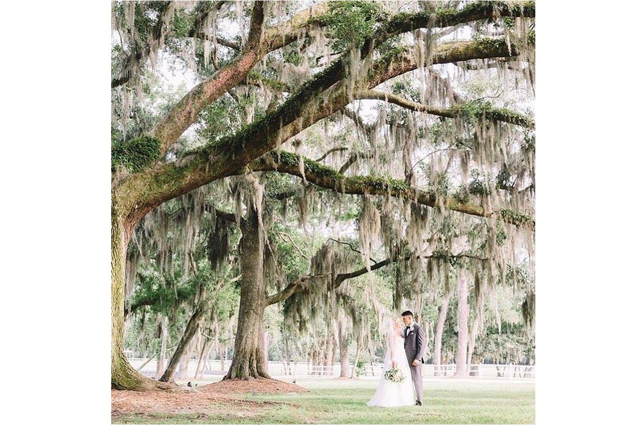Weddings - Plantation Oaks Farms Wedding Venue