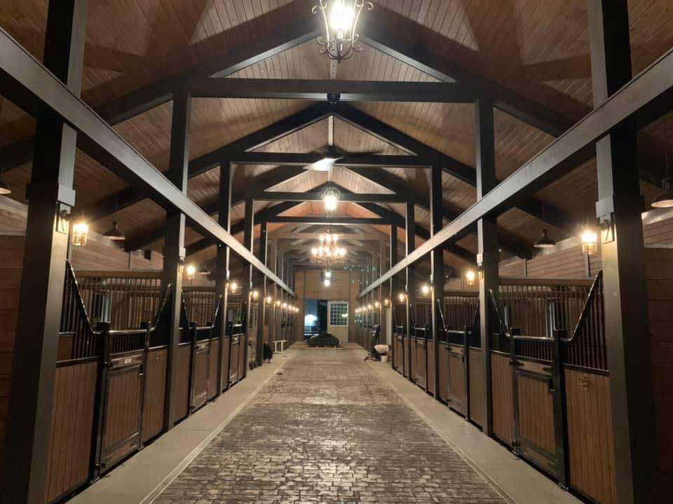 horse-hotel-ftd-img2